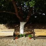 sintirisi-katharismos-palaias-vrisis-platania-9